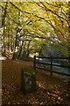 SE0218 : Ryburn Reservoir woods by Paul Harrop
