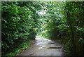 TQ1672 : Thames Path heading south by N Chadwick