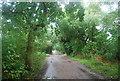 TQ1672 : Thames Path going south by N Chadwick