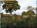 SJ9894 : At the back of Hattersley by Gerald England
