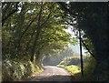 SS8201 : Road near Combe Lancey : Week 43