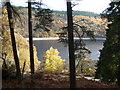 SN9162 : Autumn colours around Caban-coch Reservoir : Week 44