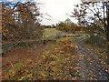 SD7506 : Manchester, Bury & Bolton Canal by David Dixon