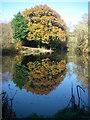 SU0811 : Gold Oak Farm by Barry Deakin