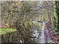 SD7505 : Manchester, Bolton & Bury Canal, Prestolee by David Dixon