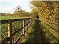 SU9182 : Bridleway, Hitcham by Derek Harper