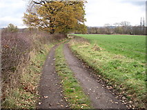 SJ9184 : Footpath on Lower Park Road towards Poynton by Chris Wimbush