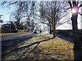 SJ7862 : The A50 on a cold Sunday morning by Christine Johnstone