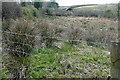 R2564 : Rough grazing at Burren by Graham Horn