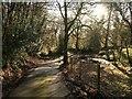 SX7289 : Drive to Coombe by Derek Harper