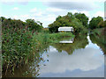 SO9161 : Worcester and Birmingham Canal south of Hanbury Junction, Worcestershire by Roger  Kidd