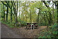 TQ4936 : Picnic table by Forest Way by N Chadwick