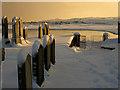 NK0025 : Newburgh: winter in Holyrood cemetery : Week 51
