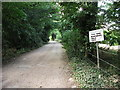 TL1552 : Entrance driveway to The Vine Nurseries, Blunham by John Brightley