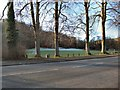TQ2909 : Patcham Recreation Ground by Paul Gillett