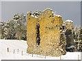 NT3039 : Nether Horseburgh Tower : Week 2