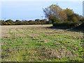 SP7503 : Farmland, Chinnor by Andrew Smith