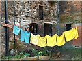 SK5639 : Washing line in recess beneath Nottingham Castle : Week 3