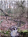 TQ4263 : Stream in Lake Wood by Mike Quinn