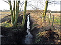 SJ8180 : Sugar Brook near Lindow Farm, Paddockhill, Cheshire by Anthony O'Neil