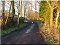 SJ8180 : Peat Farm entrance on Lindow Moss by Anthony O'Neil