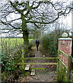 SJ8179 : Public footpath, towards Row of Trees, Wilmslow, Cheshire by Anthony O'Neil