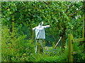 SJ6880 : Scarecrow at Arley Green, Cheshire by Anthony O'Neil