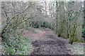 SP9701 : Bridleway to Botley by Graham Horn