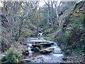 SX0789 : Rocky Valley near Bossiney by Sally