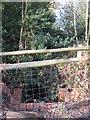 TQ4165 : Culvert on Barnet Wood Road for a drain feeding the River Ravensbourne by Mike Quinn