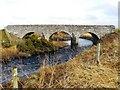ND3248 : Puldagon Bridge : Week 7