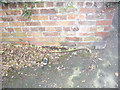 SJ3669 : Cut Mark: Seahill Road, Saughall by VBForever