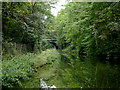 SP0481 : Worcester and Birmingham Canal near Bournville, Birmingham by Roger  Kidd