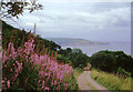 NZ9503 : The Cleveland Way near Stoupe Beck, North Yorkshire by Roger  Kidd
