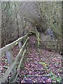 TM3763 : Steps of the footpath to Grove Farm &amp; the B1119 Rendham Road by Adrian Cable