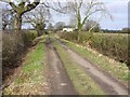 SJ6467 : Lane at Catsclough by John Harrison