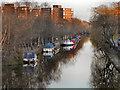 SJ7698 : Bridgewater Canal, Patricroft by David Dixon