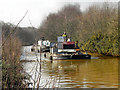 SD7300 : Barges on Bridgewater Canal by David Dixon