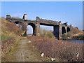SJ7192 : Cadishead Viaduct by David Dixon