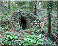 TG2006 : Small hut on the site of an old chalk quarry, Eaton (Norwich) by Evelyn Simak