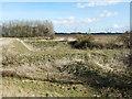 TF4616 : Abandoned water storage pits near the River Nene by Richard Humphrey