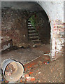 TG2006 : Lime kiln at abandoned chalk pits in Eaton, Norwich by Evelyn Simak