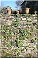 SX4168 : Pots on garden wall by Hugh Craddock