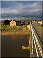 SJ3665 : Alongside Saltney Ferry footbridge : Week 12
