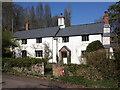 ST1037 : Cottages, Kingswood : Week 12