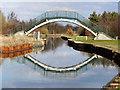 SJ6999 : Lingard's Bridge by David Dixon