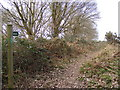 TM3859 : Footpath to Hulver Lane by Adrian Cable