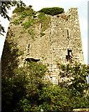 R6363 : Coollisteige Castle by Roger Diel