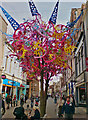 TA0928 : Decorated trees, Hull : Week 14