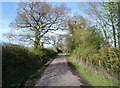 SJ8082 : Woodend Lane by Anthony O'Neil